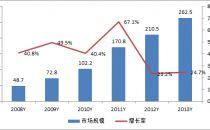 2013年国内IDC市场规模达262.5亿 增长率提升24.7%