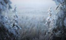 靠寒吃寒!芬兰依天气优势建数据中心