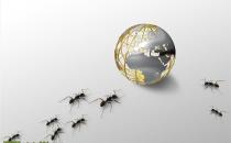 """""""双11""""之金融备战:蚂蚁金服集体总动员"""