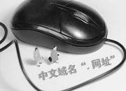 抢注中文域名或致商标侵权