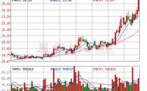 鹏博士筹划非公开发行股票 12日起停牌