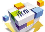 中国通信业重组要考虑引入民营资本