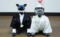 日本人对机器狗这么长情 索尼怎忍心放弃