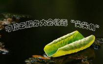"""2015可信云服务大会将露""""尖尖角"""""""