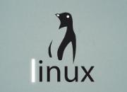 新手必读:盘点Linux服务器的8大优势