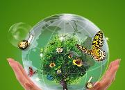 宁夏入选国家绿色数据中心试点地区