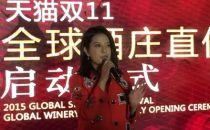 """赵薇天猫开店:娱乐圈的女版""""巴菲特""""备战双十一"""