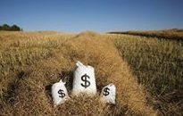 农村互联网金融的机会在哪里?