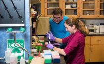微软研发DNA存储技术 数据中心仅糖块大小!