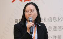东方金信石棋玲:SeaBox海盒大数据技术与产品创新