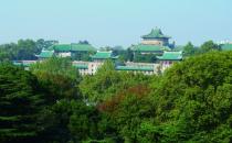 武汉大学:最美大学 最美网络