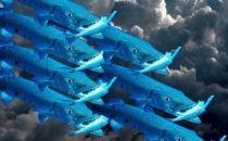 梭子鱼亮出利齿 开始吞食云市场
