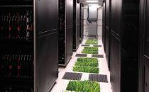 云计算推动企业采用清洁能源