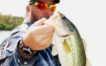 钓不上来鱼可能不赖你技术差 因为没用它