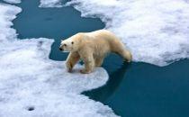 人工智能也能对抗全球变暖?