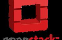 如果真的要把Go语言加入OpenStack开发,需要考虑哪些问题?