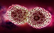深度学习,让人类又抓住一根抗击癌症的稻草