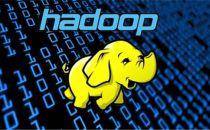 Gartner报告:东方金信进入Hadoop世界厂商名录