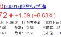 网宿科技董事长刘成彦质押约3亿元股权 用于个人资金需求