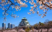 继韩国之后  谷歌公司又计划在大阪推出其在日本的第二个云区域数据中心