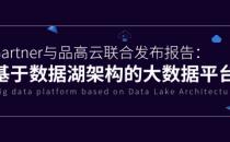 品高云与Gartner联合发布《基于大数据平台的数据湖架构》报告正式上线