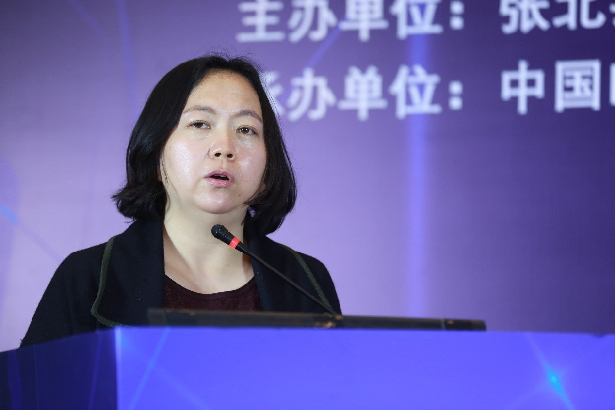北京市经济和信息化局局长助理 王兰
