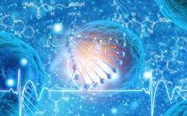 巨头领衔基因测序商业化,精准医疗又该如何前行?