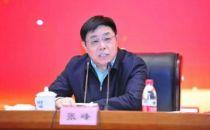 工信部总工程师张峰:加快推进国家监管基础设施和运行监测大数据中心的建设