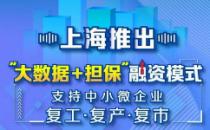 """上海推出""""大数据+担保""""融资模式,支持中小微企业复工复产复市"""