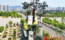 重庆移动提前半年完成5G年度建设目标