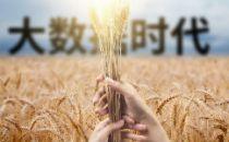 潍坊国家农综区大数据中心启动仪式举行