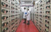 代表委员热议加快哈尔滨国家大数据中心基地建设