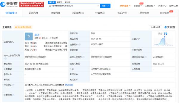 天眼查 四川云领智城信息科技有限公司1
