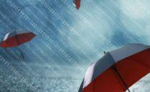 商业网络平台 利用大数据滥用市场支配地位的反垄断研究